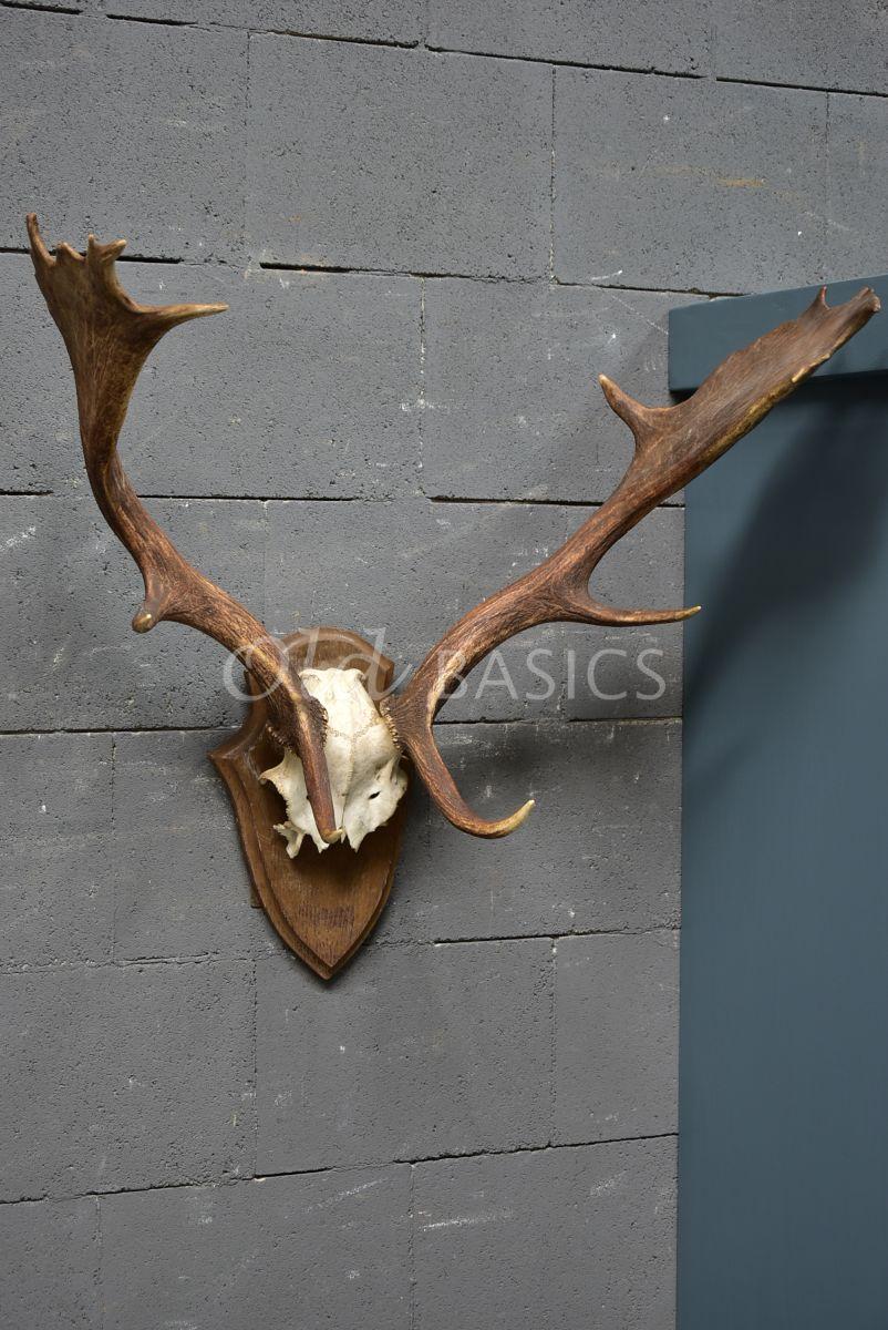 Detail van Gewei, naturel, materiaal hout